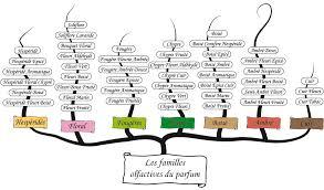 notes parfum
